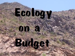 Ecology On A Budget