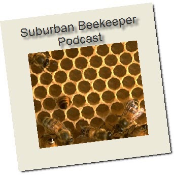 The Suburban Beekeeper Podcast