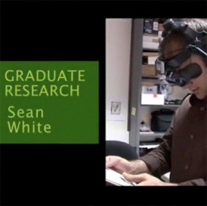 Sean White - Computer Science