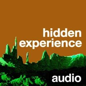 Cover image of hidden experience audio