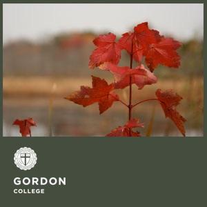 The Seasons at Gordon