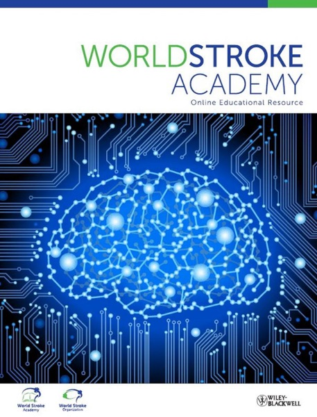 World Stroke Academy, Exercise After Stroke - Making the Most of It