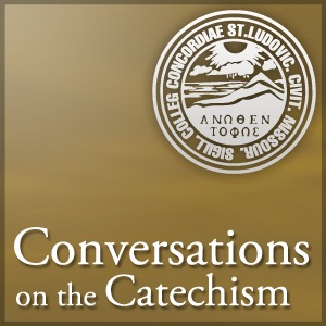 Conversations on the Catechism (Audio)