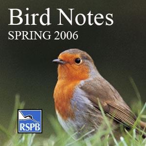 RSPB Bird Notes