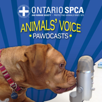 Ontario SPCA - Talking all things animal-related! podcast