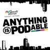 Anything is Podable artwork