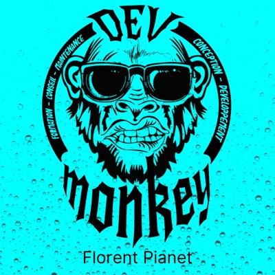 Dev Monkey