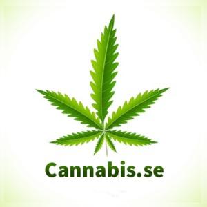 Cannabis.se - Podcast