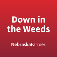 Down in the Weeds podcast