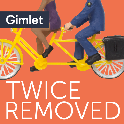 Cover image of Twice Removed