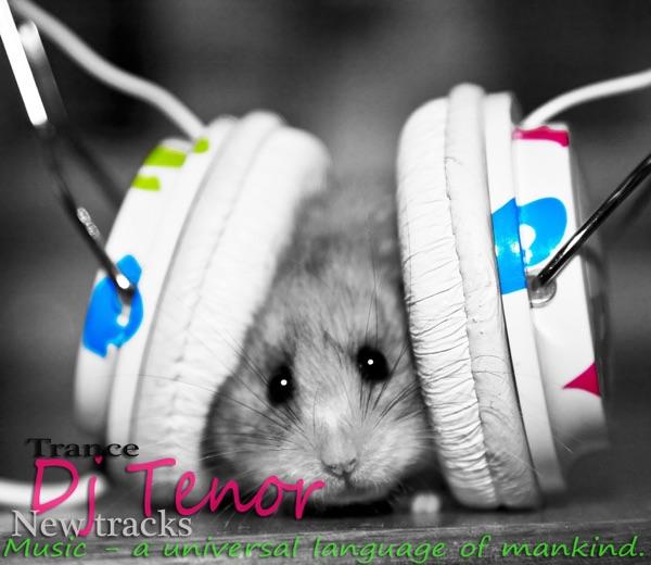Dj Tenor - Combinations Album