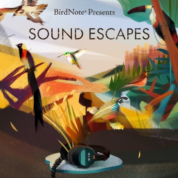 BirdNote Presents: Sound Escapes