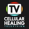 Dr. Pompa & Cellular Healing TV artwork