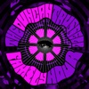 Duncan Trussell Family Hour artwork