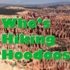 Who's Hiking Hoodoos
