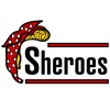 Sheroes artwork