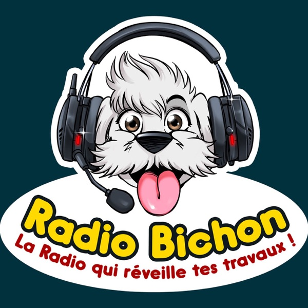 GSB Vs GROSSISTE Vs INTERNET Batimat 2019 Radio Bichon
