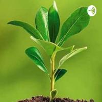 Derecho Ambiental podcast