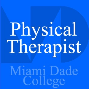 Physical Therapist - Ken Lee - Lab Videos