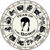 Year of the Bowie (The Life of David Bowie)