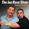 Joe Rose Show artwork