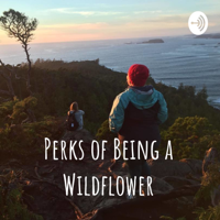Perks of Being a Wildflower podcast