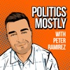 Politics Mostly artwork