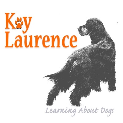 Listener Questions to Learning About Dogs, the Hosts Answer!