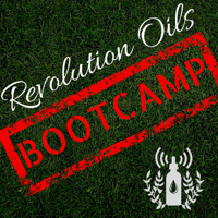 Revolution Oils Business Bootcamp | Your 30 Day Guide to Starting and Growing Your Young Living Essential Oil Business podcast