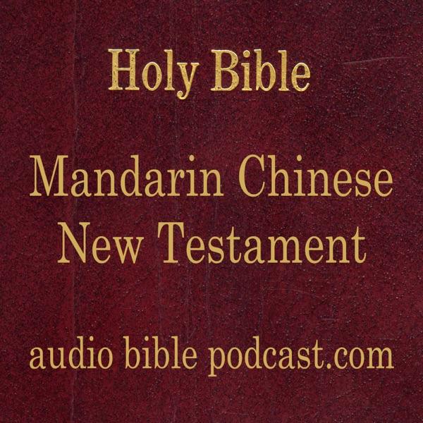 ABP - Mandarin Chinese Bible - New Testament - January Start