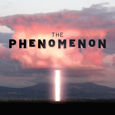 The Phenomenon:Luciola Creative