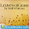 Leaves of Grass by Walt Whitman artwork