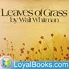 Leaves of Grass by Walt Whitman artwork