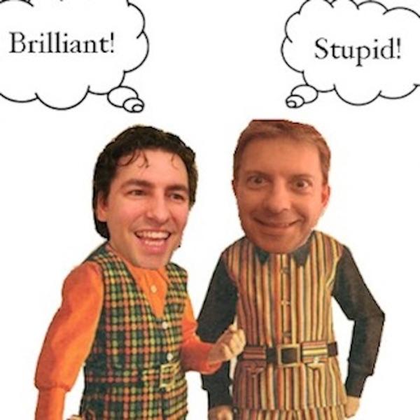 Brilliant or Stupid?
