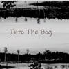 Into The Bog artwork