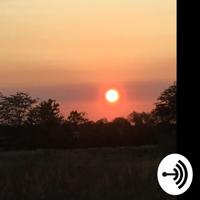Madison Johnston podcast