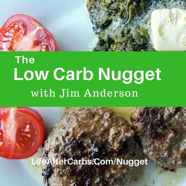 The Low Carb Nugget