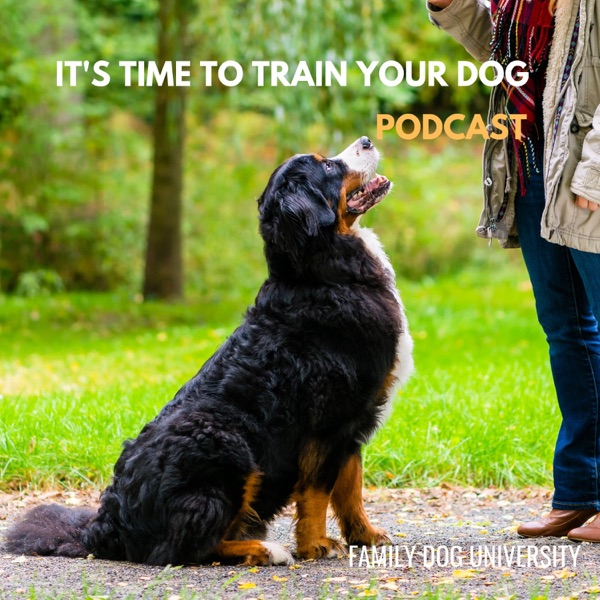 It's Time to Train Your Dog Podcast