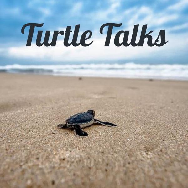 Turtle Talks