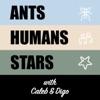Ants Humans Stars artwork