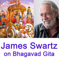 James Swartz  - Vedanta Talks on the Bhagavad Gita podcast