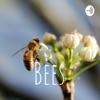 Bees artwork