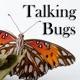 Talking Bugs