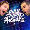 Only Stupid Answers artwork