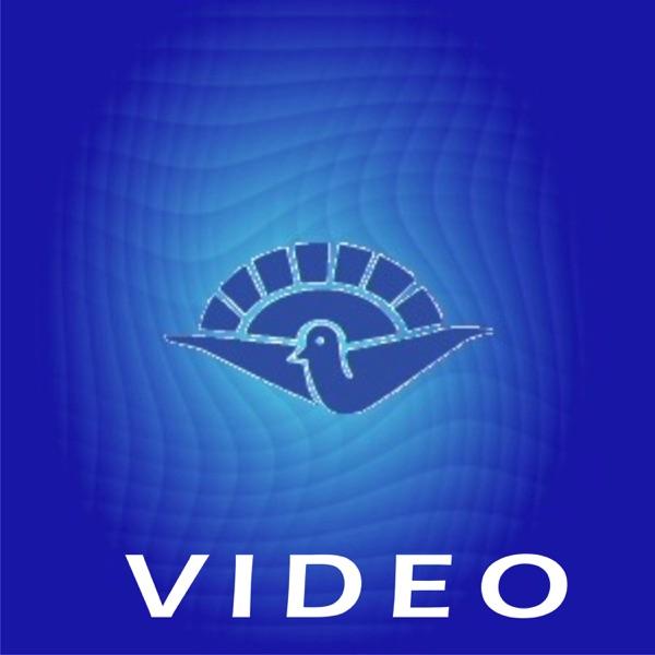 Video – Iglesia Betel