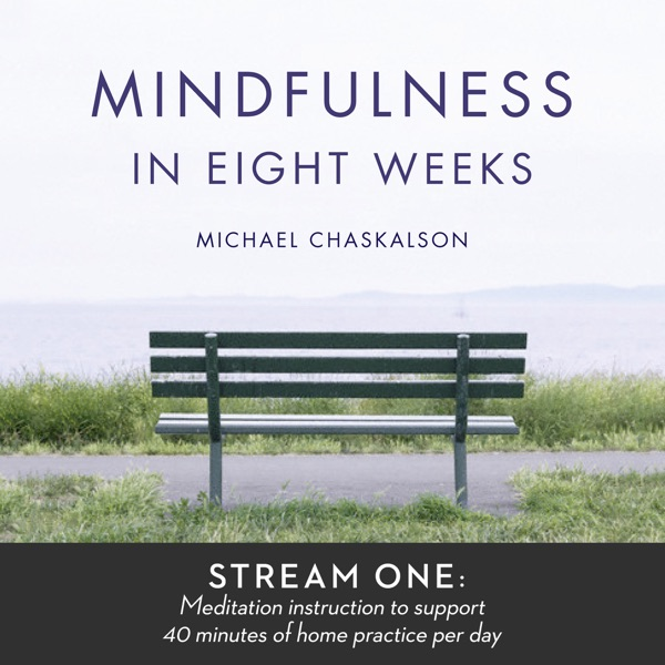 Mindfulness in 8 Weeks: 40 Minutes a Day Program
