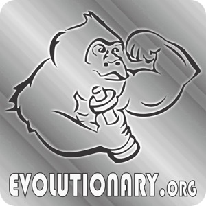 Evolutionary Radio
