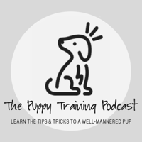 The Puppy Training Podcast podcast