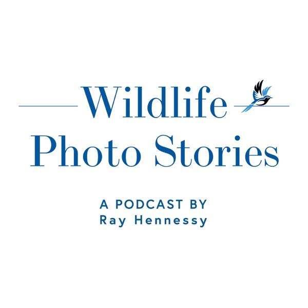 Wildlife Photo Stories