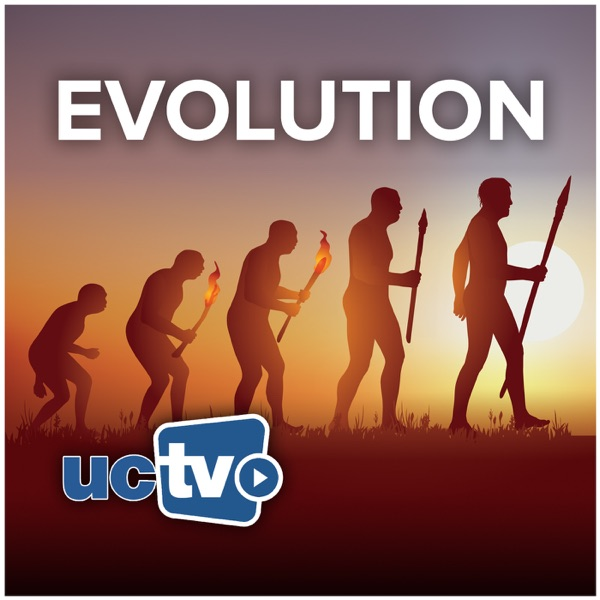 Evolution (Audio)